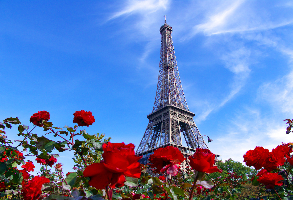 Tour Eiffel et roses rouges, Paris, France